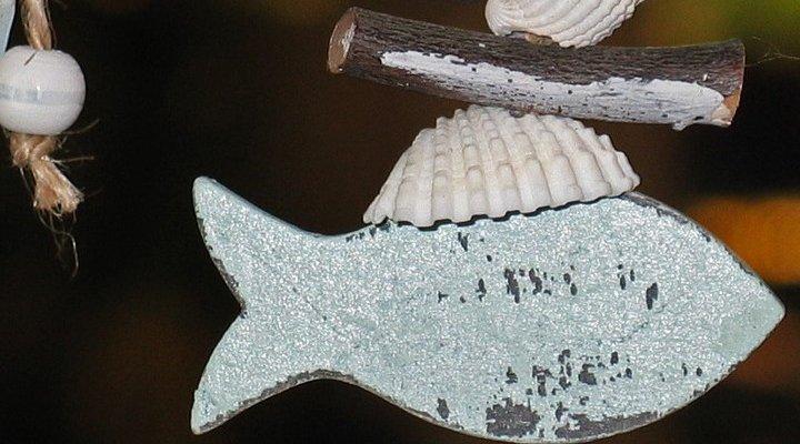 visplankjes-maken
